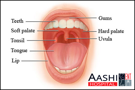 Mouth,Best ENT Surgeon in Ahmedabad